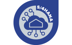 S/4HANA : Rise with SAP  demystified and what's in it for you!